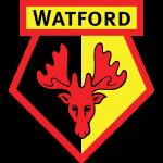 Watford soccer team logo