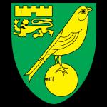 Norwich soccer team logo