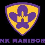 NK Maribor soccer team logo